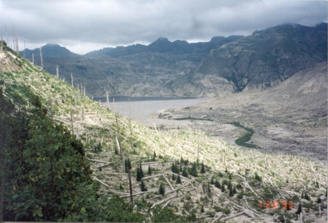 Spirit Lake 15 years after Mount St. Helens eruption