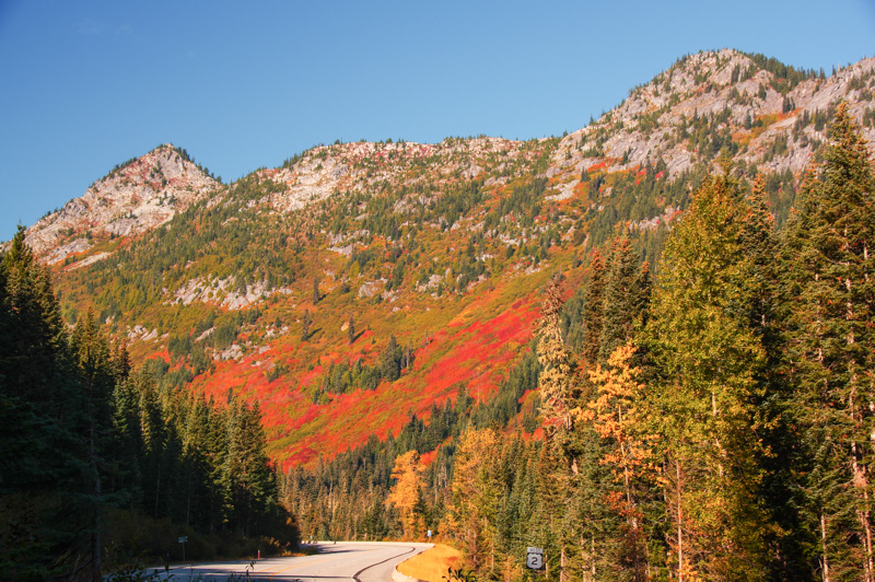 Fall Colors on Stevens Pass, Washington